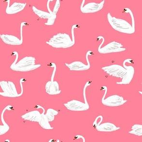 Swans - Pink