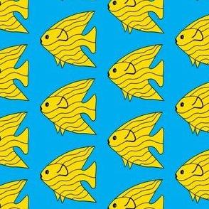 FI_7513_R Angel Fish yellow striped fish on cornflower blue