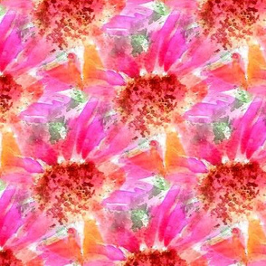Summer Bright Coneflowers