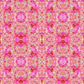Coneflower Kaleidoscope