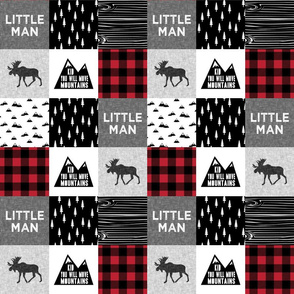 "3"" small scale - Little Man & You Will Move Mountains Quilt Top - buffalo plaid  - C18BS"