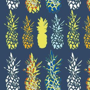 navy blue pineapple 18x21