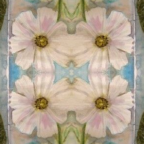 lacey leaves and cosmos