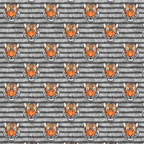 "(3/4"" scale) tiger - grey stripes C18BS"