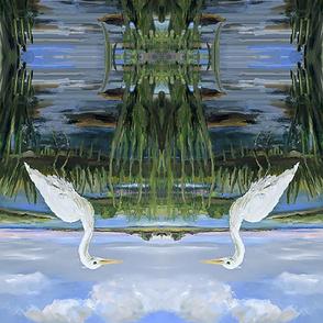 Erica_Stonington Egret