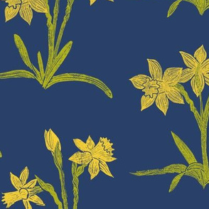 yellow daffodils on navy