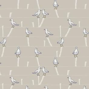 Seagull - Bird Print