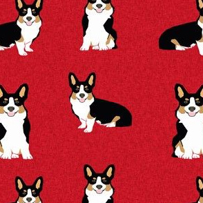 tri corgi dog fabric - pet quilt a dog, dogs, pet quilt