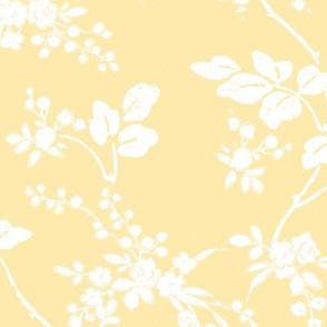 Ladybelle buttercup 1