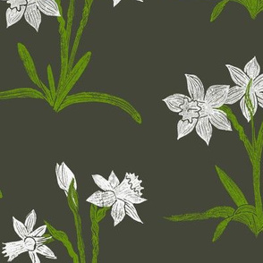 white daffodils on khaki