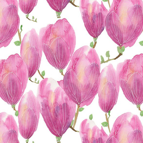 Watercolour magnolias