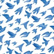 Flying birds in blue