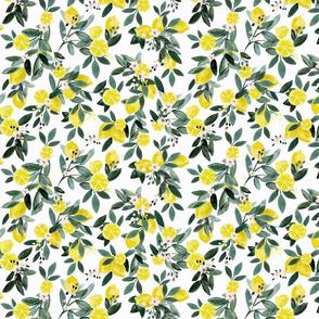 DearClementine_lemons-white - S