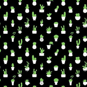 Itty Bitty Cacti 1