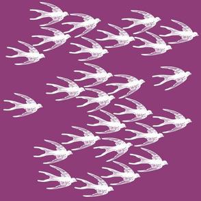 Swallows in Purple