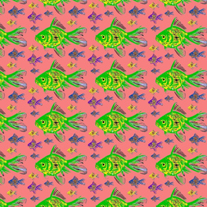 fish coral background