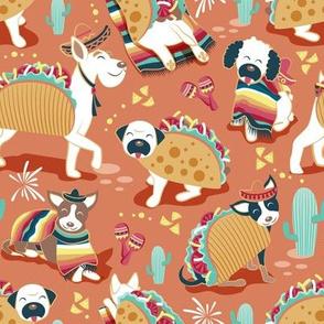 Mexican tacos dogs team // dark orange