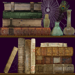 Professor Darksage's Forbidden Library
