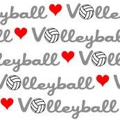 Riove-volleyball_shop_thumb