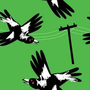 Crazy Magpies green by Mount Vic and Me