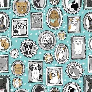 doggo portraits // cute dog, dogs, dog breed, pet, pets, cute dog poodle, terrier, pets, -aqua