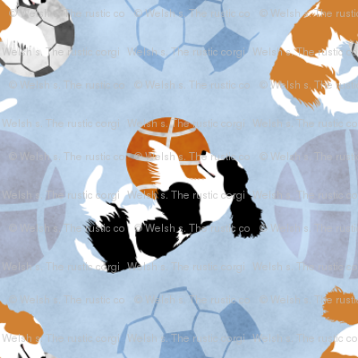 Small Spaniels and sports balls - blue basketball soccer football