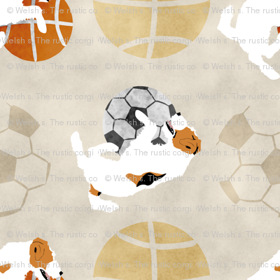 Large Jack Russell terriers and sports balls - tan basketball soccer football