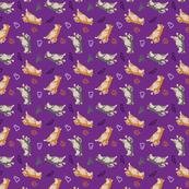 Tiny Shiba Inu B - Halloween