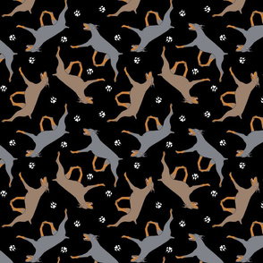 Trotting dilute Doberman Pinschers and paw prints - black