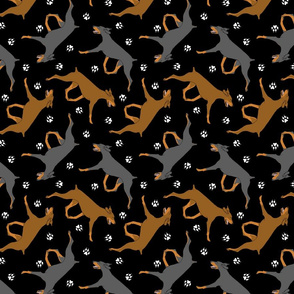 Trotting uncropped Doberman Pinschers and paw prints - black