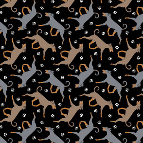 Trotting natural dilute Doberman Pinschers and paw prints - black