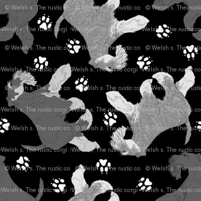 Trotting natural Miniature Schnauzers and paw prints - black
