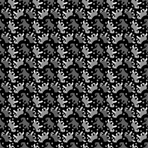 Trotting uncropped Miniature Schnauzers and paw prints - tiny black