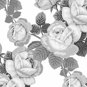 Vintage roses in black and white / grey scale