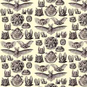 Ernst Haeckel Bats Lavender Sky