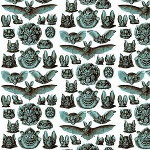 Ernst Haeckel Bats Midnight Sky