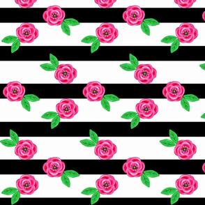Garden Gate Stripe  . Black Stripe