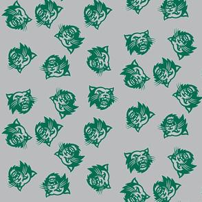 Co Gats  Green Gray