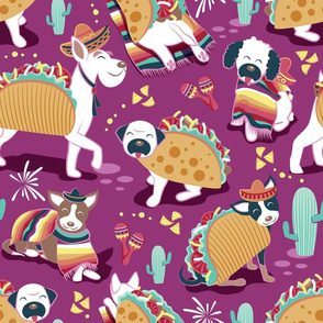Mexican tacos dogs team // normal scale // dark pink