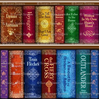 Thru The Stones Bookshelf