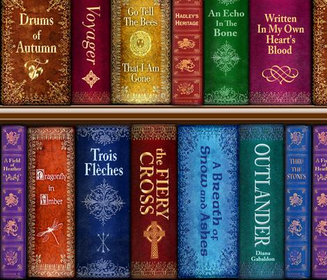Thru The Stones Bookshelf fabric by sssowers on Spoonflower - custom fabric
