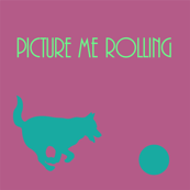 Disc Dog - Picture Me Rolling