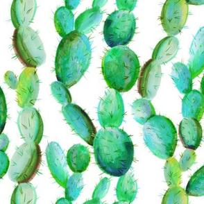 Cactus Among Us - Southwest Desert Cacti