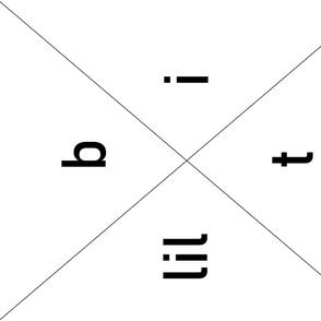 lil bit X