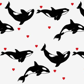 Killer Whales + Hearts - Medium Scale