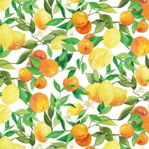 Watercolor Oranges and Lemons - on white