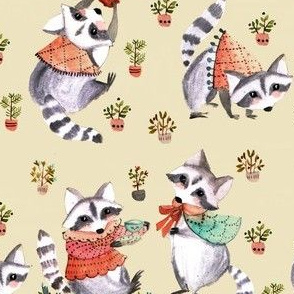 raccoon afternoon pois
