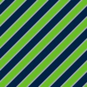 Rseattle-seahawks-nfl-team-colors-01-01-01-01_shop_thumb