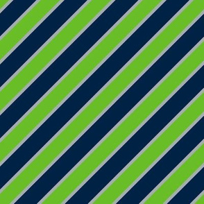 Seattle Seahawks Team colors