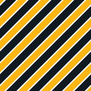 Pittsburgh Steelers team colors